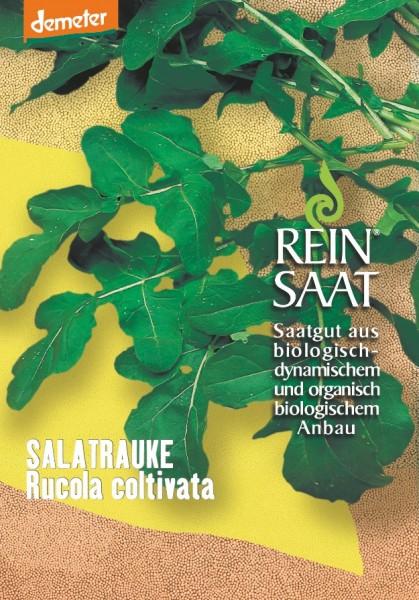 Salatrauke - Rucola coltivata - Bio