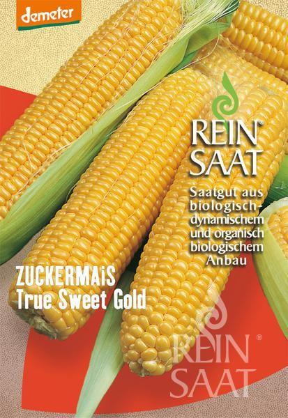 Zuckermais - True Sweet Gold - Bio