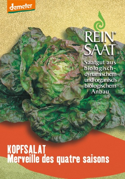 Kopfsalat - Merveille des quatre saisons - Bio