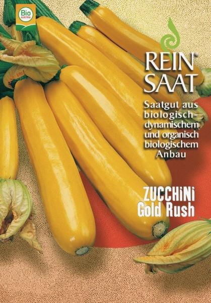 Zucchini - Gold Rush - Bio