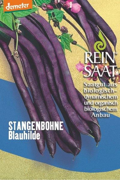 Stangenbohne - Blauhilde - Bio