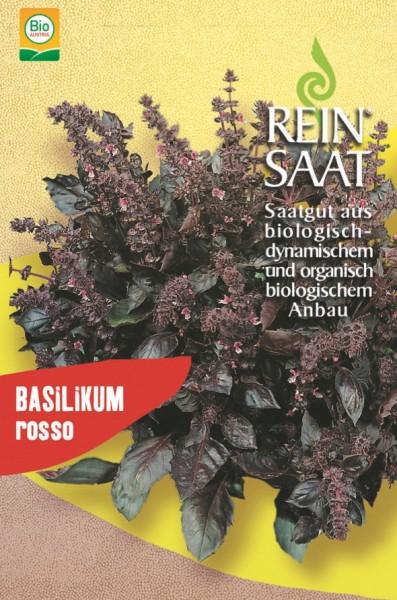 Basilikum Rosso - Bio