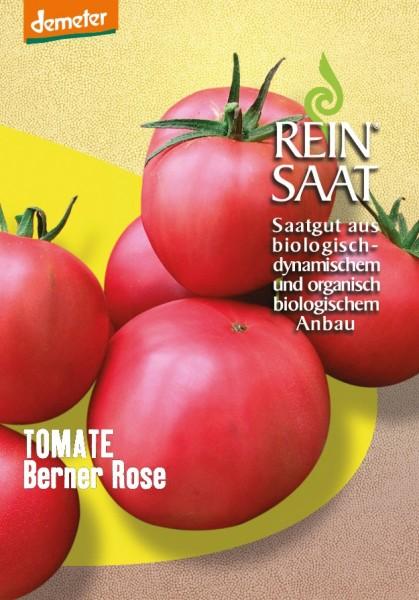 Tomate - Berner Rose - Bio