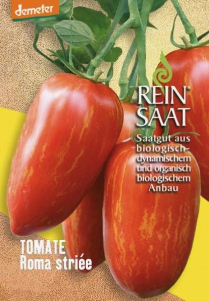 Tomate - Roma striée (Striped Roman) - Bio