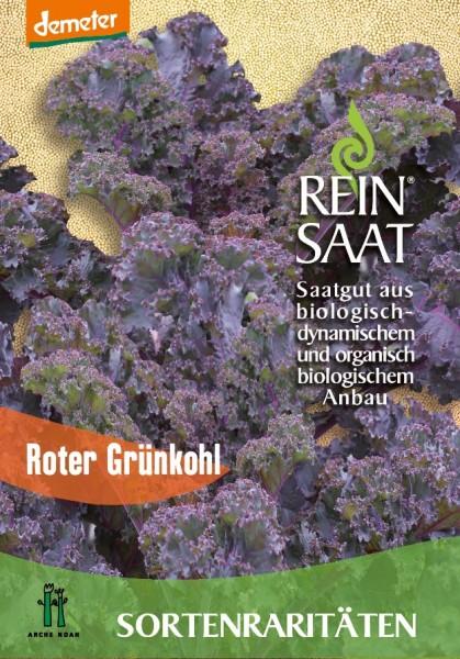 Grünkohl - Roter Grünkohl - Bio