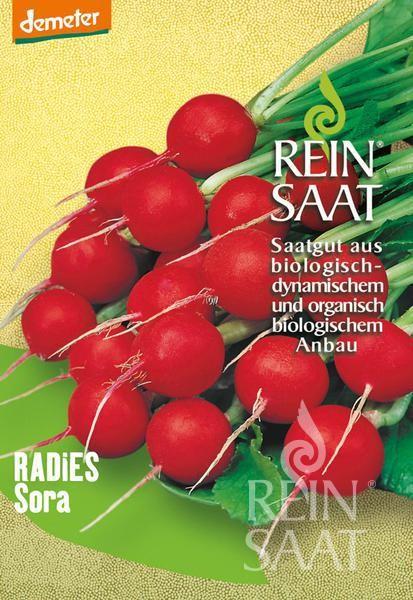 Radieschen - Sora - Bio