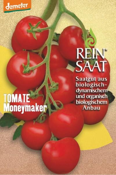 Tomate - Moneymaker - Bio