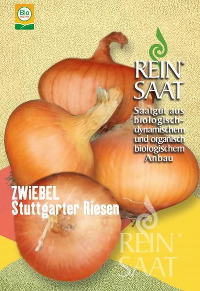 Zwiebel - Stuttgarter Riesen - Bio