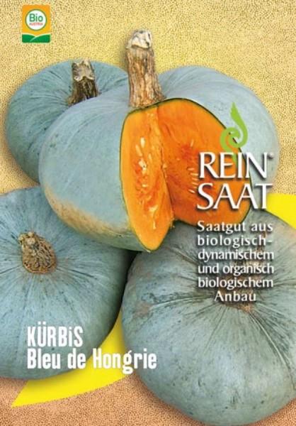 Kürbis - Bleu de Hongrie (Ungarischer Blauer) - Bio