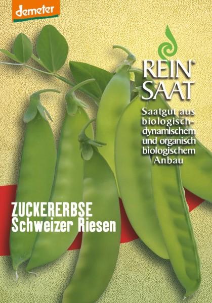 Zuckererbse - Schweizer Riesen - Bio