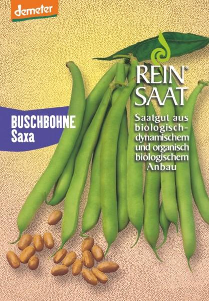 Buschbohne - Saxa - Bio
