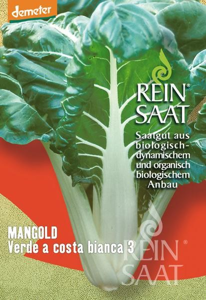 Mangold - Verde a costa bianca 3 - Bio