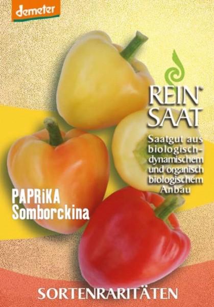Paprika - Somborckina - Bio