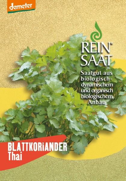 Blattkoriander Thai - Bio