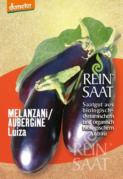Aubergine Melanzani - Luiza - Bio