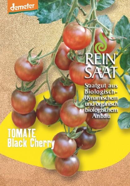 Tomate - Black Cherry - Bio