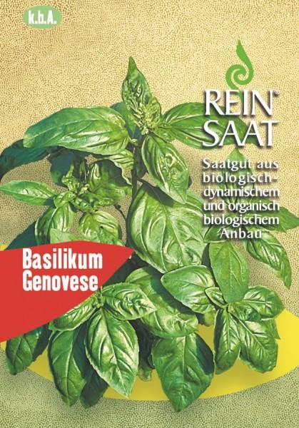Basilikum Genovese - Bio