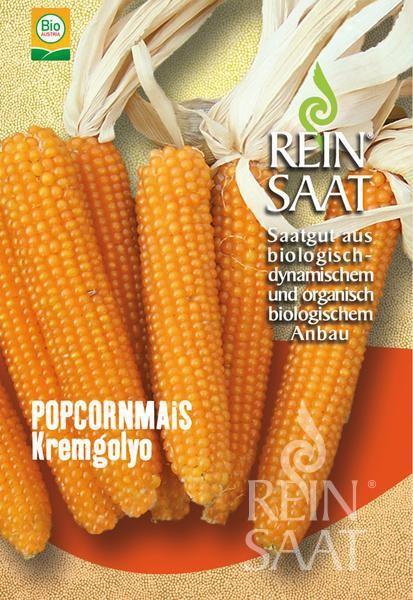 Popcornmais - Kremgolyo - Bio