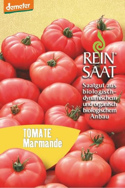 Tomate - Marmande - Bio