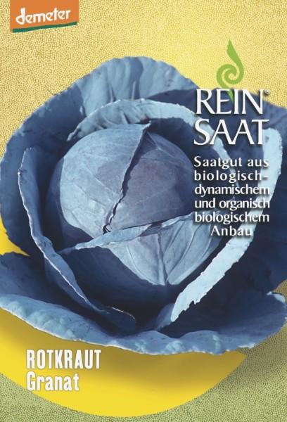 Rotkraut - Granat/Selektion ReinSaat - Bio