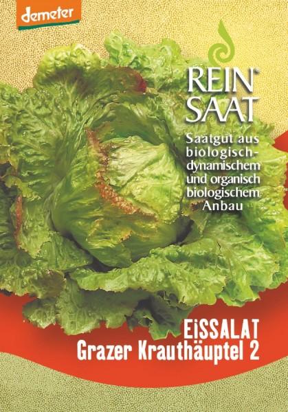 Eissalat - Grazer Krauthäuptel 2 - Bio