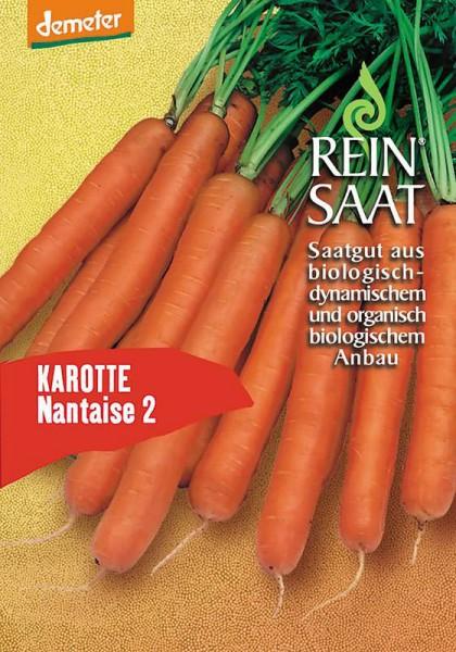 Karotte - Nantaise 2 - Bio