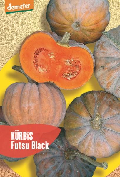 Kürbis - Futsu Black - Bio