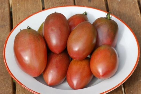 "Tomate ""Purple Russian"""