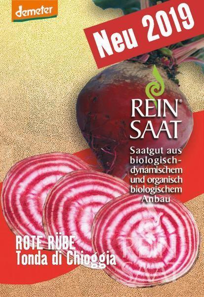 Rote Beete - Tonda di Chioggia - Bio