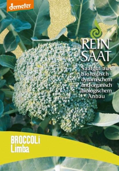 Broccoli - Limba - Bio