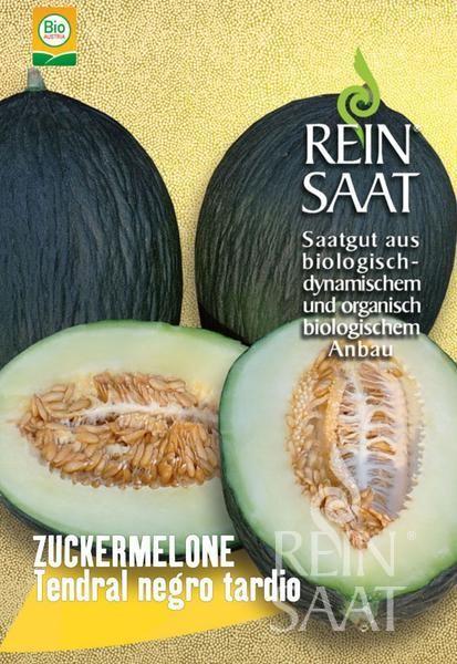 Honigmelone Zuckermelone - Tendral negro tardio - Bio