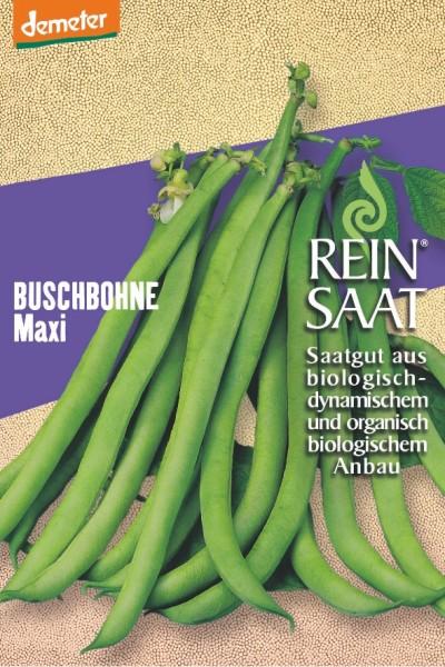 Buschbohne - Maxi - Bio