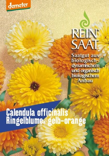 Ringelblume, gelb/orange - Calendula officinalis - Bio