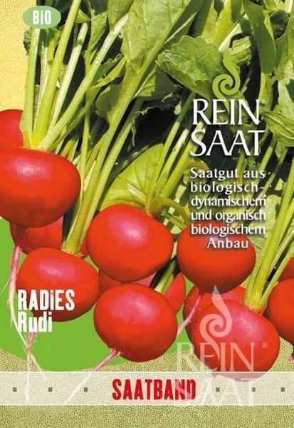 Radieschen - Rudi - Bio