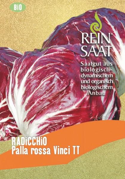 Radicchio - Palla rossa Vinci TT - Bio