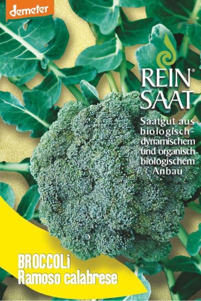 Broccoli - Ramoso calabrese - Bio