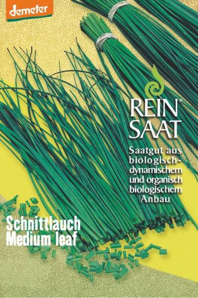 Schnittlauch Medium leaf (mittelgrobröhrig) - Bio