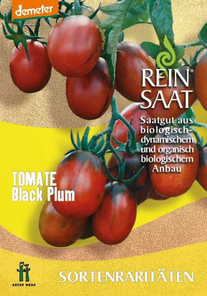 Tomate - Black Plum - Bio