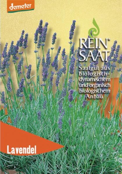 Lavendel - Bio