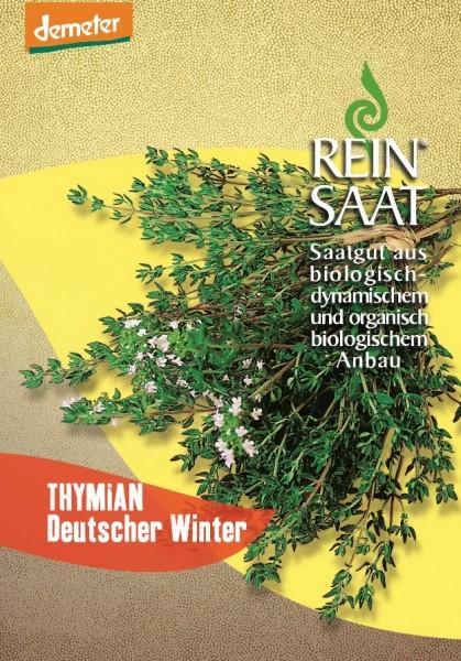 Thymian, Deutscher Winter - Bio